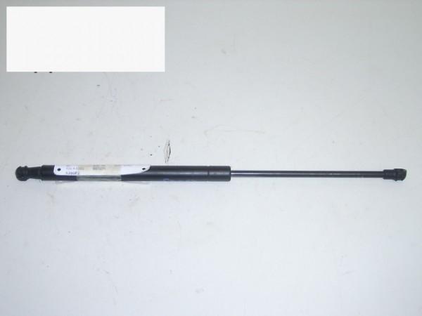 Gasdruckfeder hinten rechts - FIAT GRANDE PUNTO (199_) 1.2 0051778432